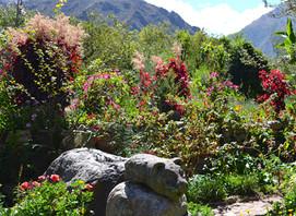 Willka Tika Gardens