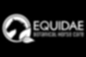 Equidae_960_x_640.png