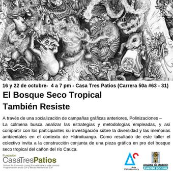 El Bosque Seco Tropical También Resiste:  conversatorio del colectivo La Colmena