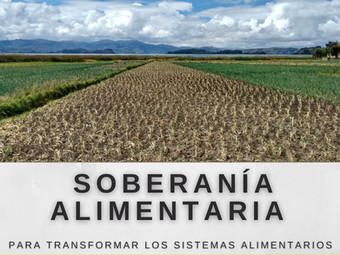 Soberanía alimentaria: otra cara de la justicia social