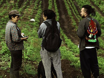 Recoger para semilla: taller de siembra solidaria