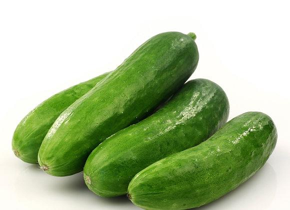 Baby Cucumber - Egyptian Cucumber 1kg