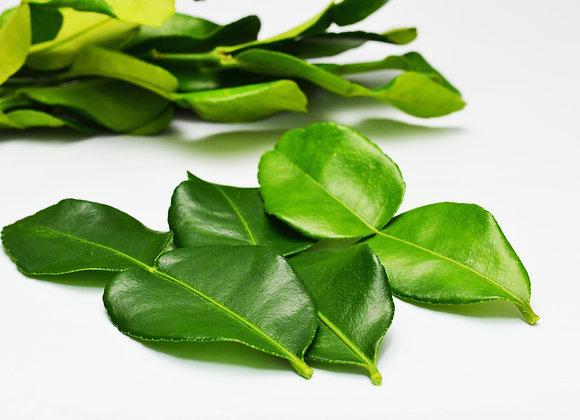 Fresh Indian Curry Leaf