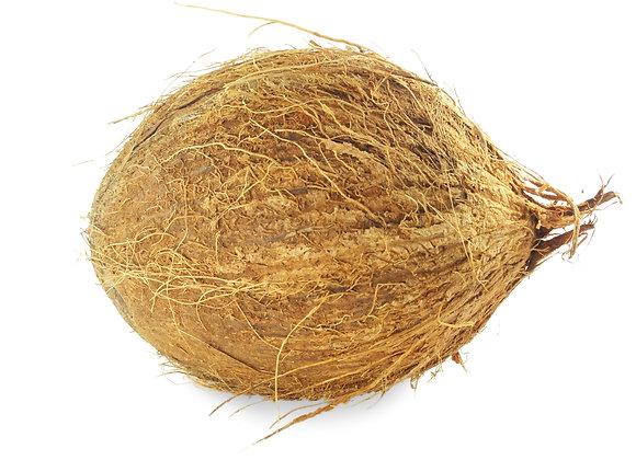 Fresh Whole Coconut / Naariyal