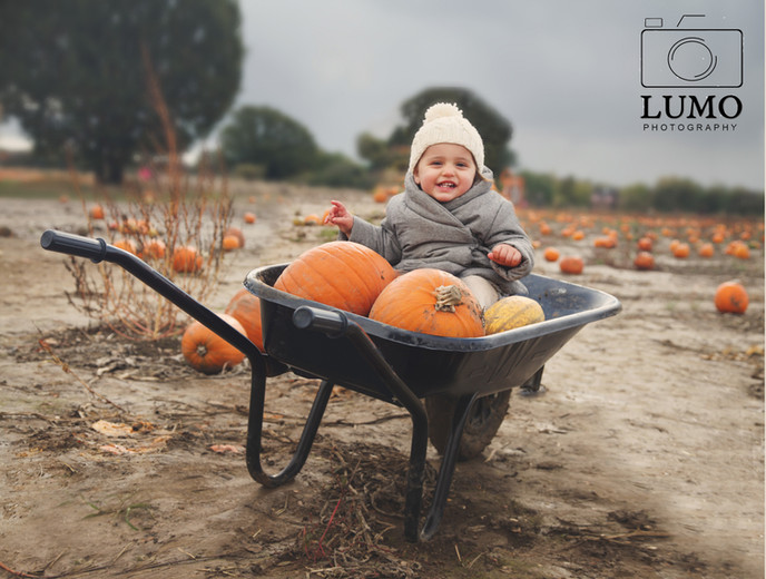 Baby Photoshoot - Essex Baby Photographer