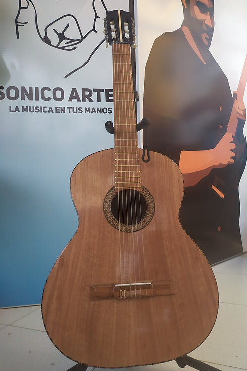 Guitarra Acustica de estudio
