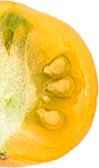 fruit-2.png