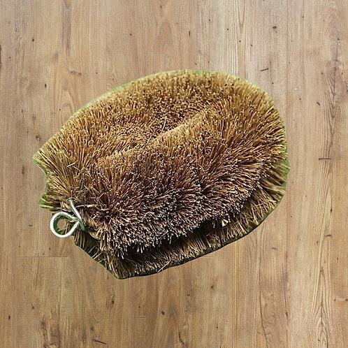 Scrubbing Brush: Coconut