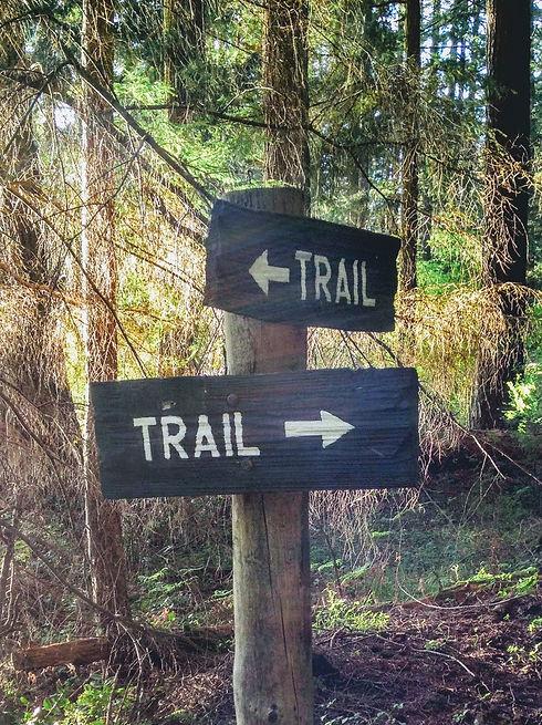women's trail series.jpg