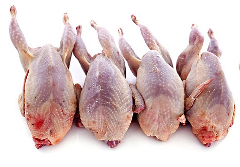 WHOLE PARTRIDGE 225-285G
