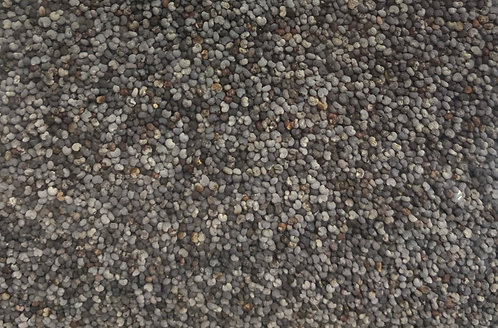 POPPY SEEDS- BLUE 1KG