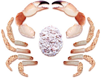 FRESH CORNISH HANDPICKED WHITE CRAB MEAT