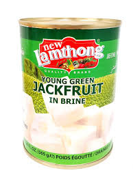 YOUNG JACKFRUIT IN SALTED WATER 565G TIN