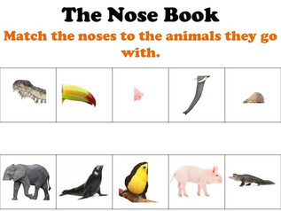 Toddler Book Club: The Nose Book