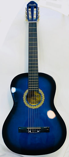 Fitness Colored Guitar