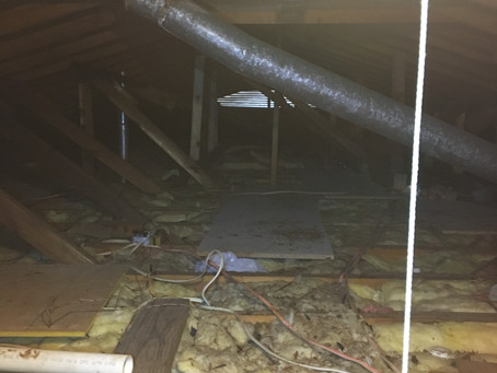 What issues to expect to find in the attic
