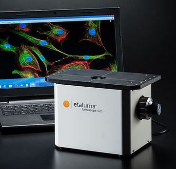 蛍光顕微鏡の使い方
