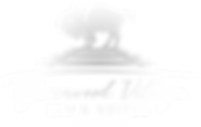 GreenwoodVillageLogo_NEW_White.png