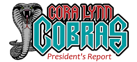 Presidents Report -logo.png
