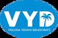vyd logo transparent_edited.png