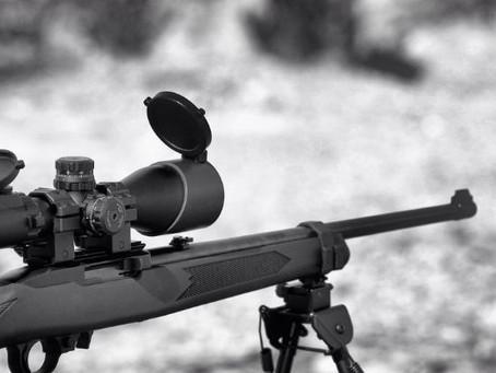 הרוגר אינו אמצעי לפיזור הפרות סדר אלא כלי נשק חם