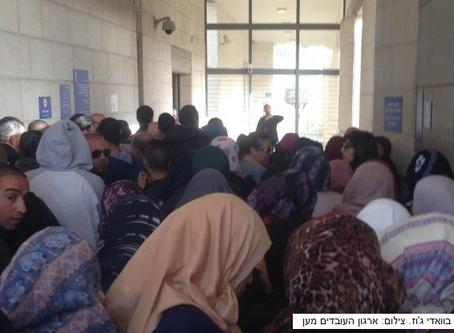 לספק שירות בערבית בלשכת התעסוקה במערב ירושלים