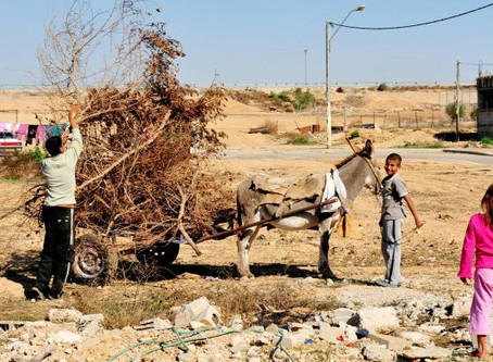 The Unrecognized Bedouin Villages in the Negev – Facts and Figures