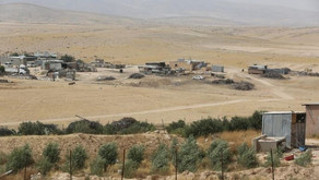 """The Police's Conduct During the """"Plowing"""" Operation in Sa'Wa Village"""