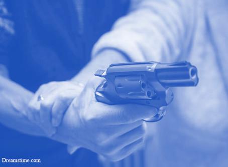 הקריטריונים החדשים של ארדן: אקדח לכל אזרח?