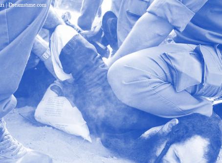 חשוב לדעת: איך מגישים תלונות נגד שוטרים