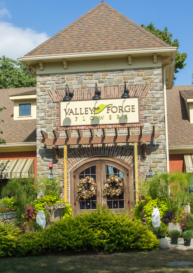 Valley Forge Flowers, Wayne