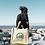 Thumbnail: Acadia National Park Hemp Tote
