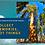 Thumbnail: Sequoia NP Postcard