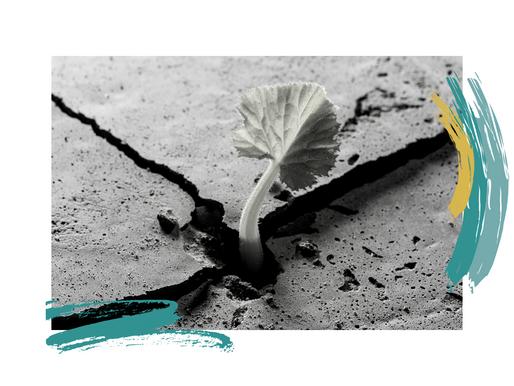 Resiliencia y Prudencia: el liderazgo en tiempos de pandemia