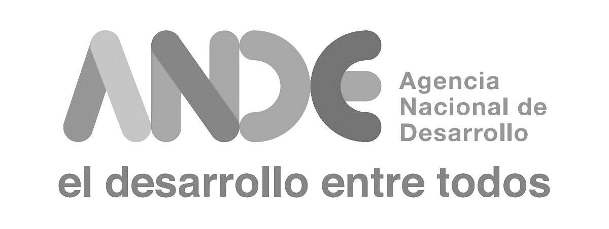 Logo Ande.png