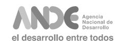 Logo Ande.png