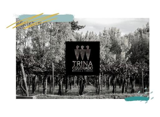 Trina Colorado Bodega & Viñedos: celebración del espíritu emprendedor.