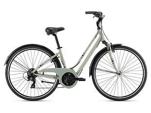 Bicicleta mujer Liv Flourish FS 3 (2021)