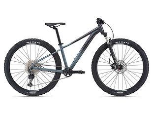 Bicicleta mujer Liv Temp 29  0