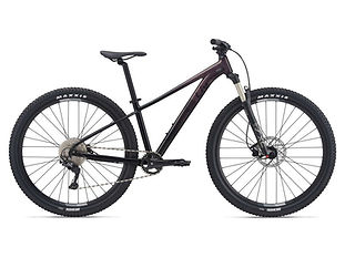 Bicicleta mujer Liv Temp 29 1