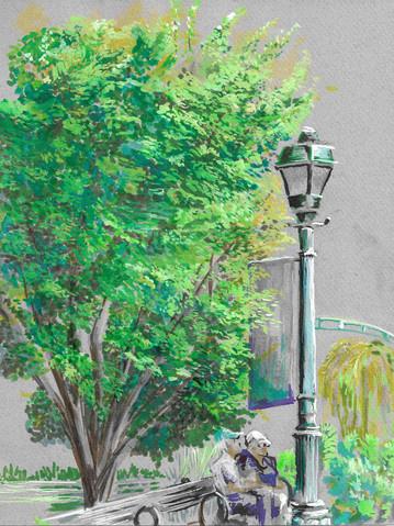 Tree in Stuyvesant Town