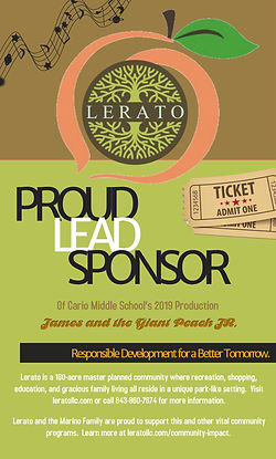 LERATO LEAD SPONSOR - PLAY.jpg