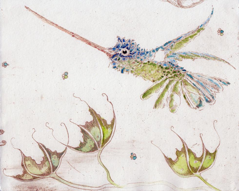 The Blue Green Humming Bird
