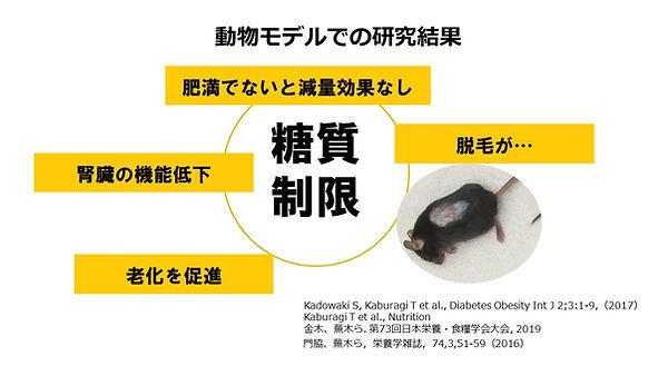 20190608_夢ナビライブ 糖質制限のホント.jpg