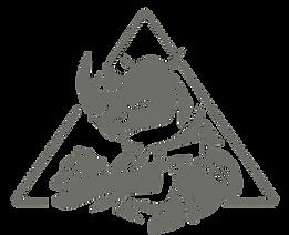 Team Logo Gun.png