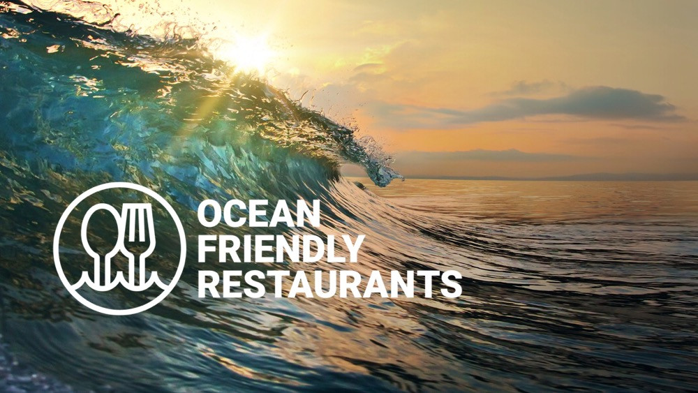 Jane Restaurant - Ocean Friendly Restaurant