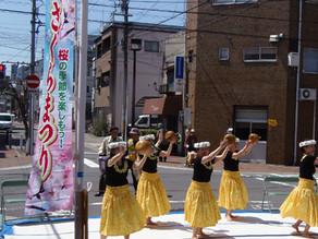 大阪市港区「桜通りde桜まつり」