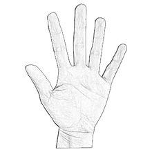 hand white.jpg