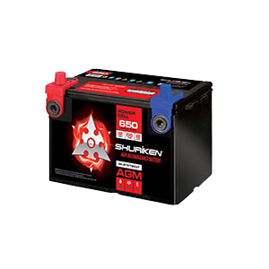 650 CRANK AMPS / 55 AMP HOURS AGM 12V Battery