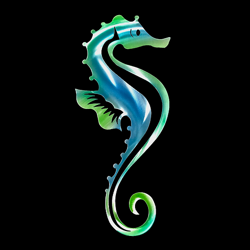 Seahorse with Detail